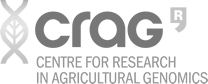 logo-cracg-2020.png